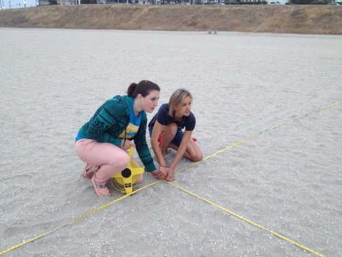 Here I am at Kids' Ocean Day, measuring out the grid for our aerial art.